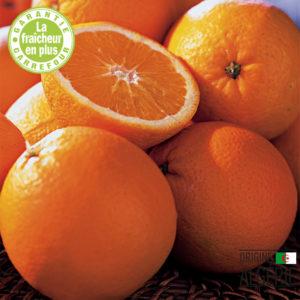 Orange Thomson