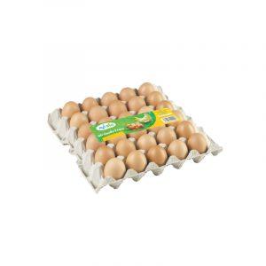 Plateau d'œufs AVIBIO